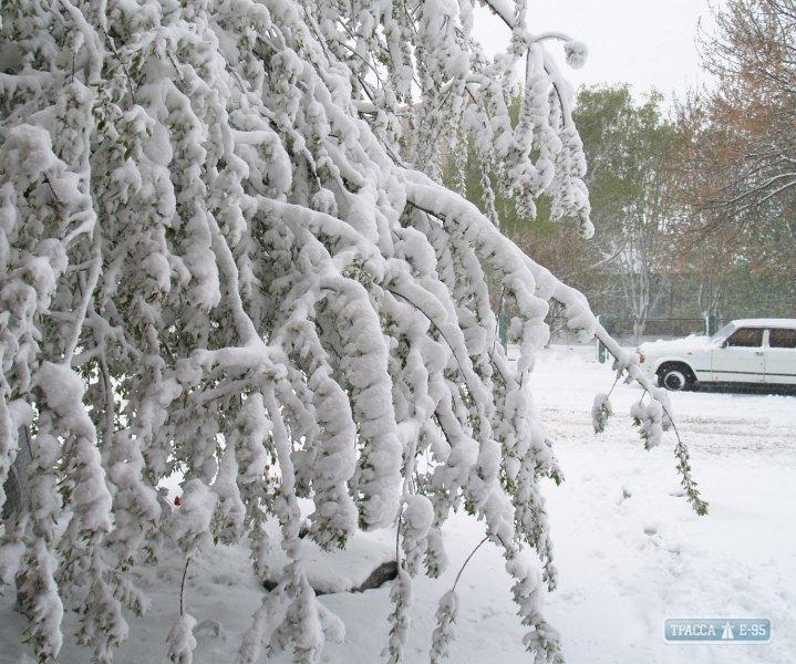 Последствия непогоды в Одесской области