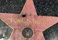 Звезда Трампа на Аллее славы подверглась вандализму