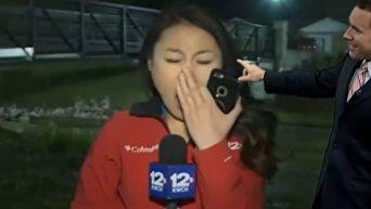 В США зевающая журналистка рассмешила ведущих прогноза погоды. Видео