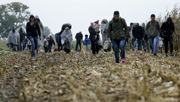 Мигранты с Ближнего Востока в Хорватии на границе с Сербией.