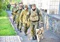 В Мариуполе для обеспечения правопорядка привлекли собак