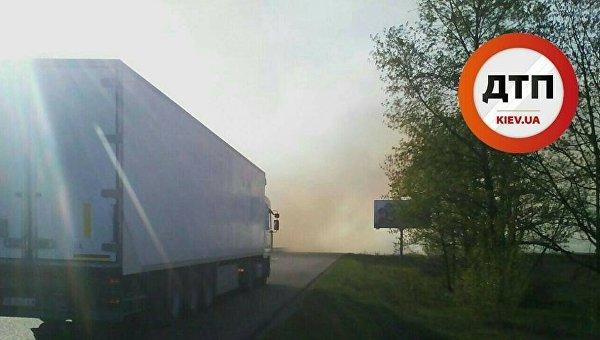 Пожар в лесу под Киевом