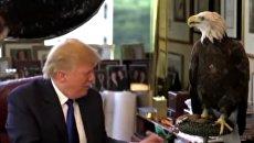 Сто дней президентства Дональда Трампа