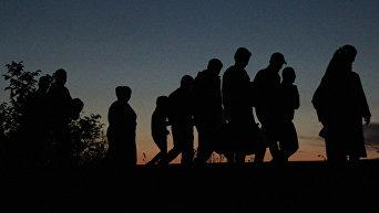 Беженцы на сербско-венгерской границе идут пешком в Австрию и Германию. Архивное фото