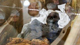 В Киеве представили коллекцию египетских древностей