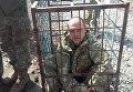Проштрафившийся боец ВСУ в клетке