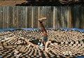 Британец прыгнул на батут с тысячей мышеловок