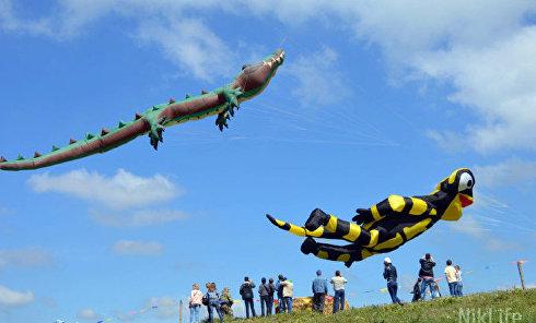 В Украине прошел первый международный фестиваль воздушных змеев