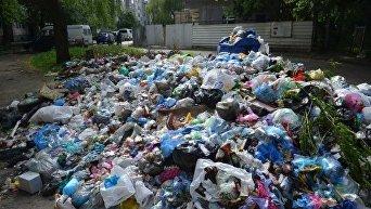 Львов утопает в мусоре