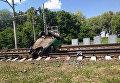ДТП при участии поезда и автомобиля в Черниговской области
