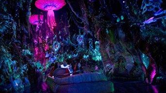 Удивительный мир Пандоры. Новый тематический парк от Disney