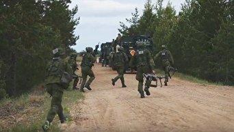 Учения НАТО Saber Strike начинаются в Эстонии. Видео
