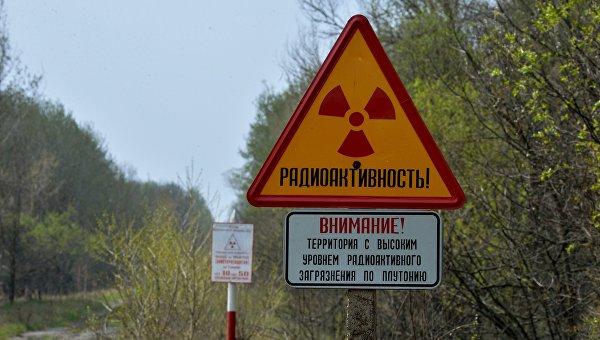 Белорусский сектор зоны отчуждения Чернобыльской АЭС. Архивное фото