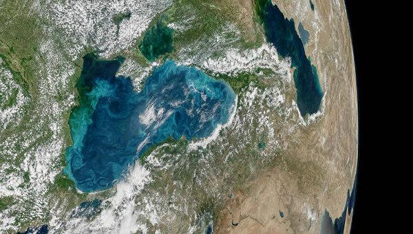 NASA показало изкосмоса Черное море благодаря цветению планктона