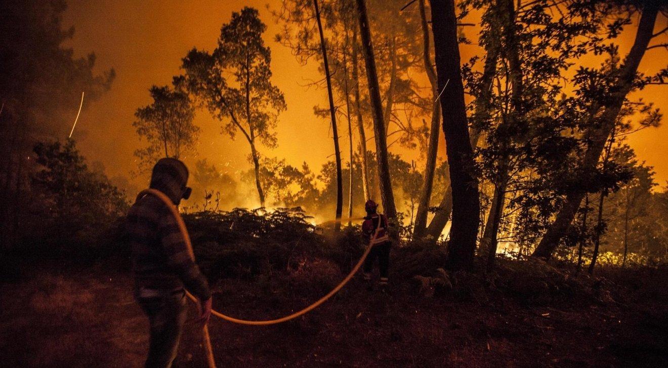 Неменее полусотни человек стали жертвами лесных пожаров вПортугалии