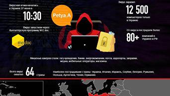 Petya идет в атаку: цифры и факты. Инфографика