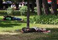 Лето в Киеве