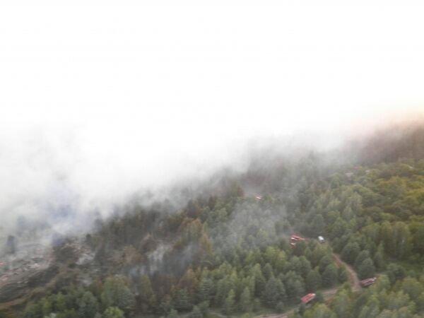 Лесные пожары в зоне ЧАЭС