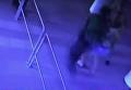 Момент выстрела в журналиста в Кривом Роге