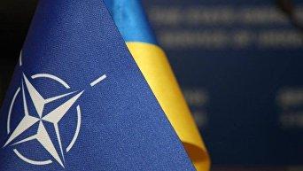 Флаги НАТО и Украины