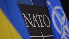 Флаги Украины и НАТО. Архивное фото