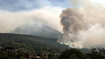 В Италии разбушевался вулкан Везувий: горят леса, туристы спасаются бегством, идет эвакуация
