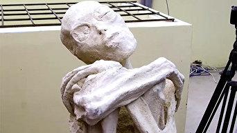 В пустыне Наска (Перу) были найдены мумифицированные тела антропоморфных существ