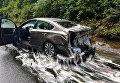 В Орегоне живые угри из перевернутого грузовика залили слизью участников ДТП