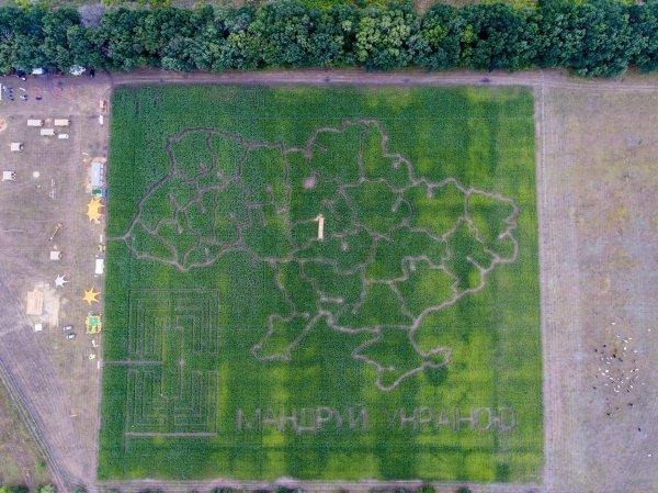 В Киеве открылся самый большой в Украине лабиринт в кукурузном поле Кукулабия.
