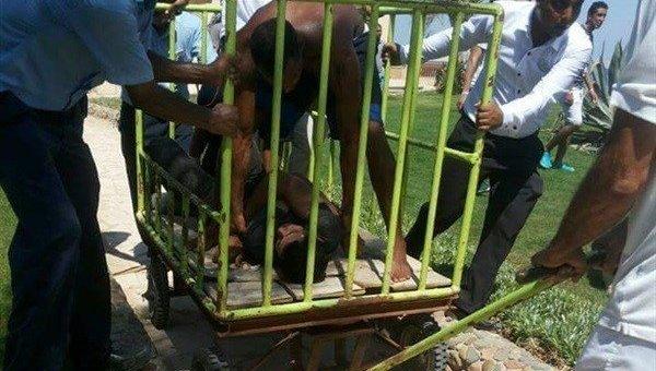 Задержанный мужчина на территории отеля в Египте, где убили двух украинок