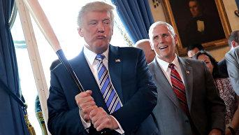 Дональд Трамп с бейсбольной битой