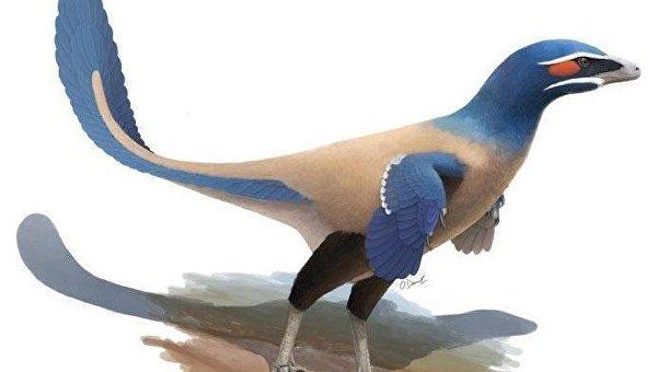Канадские палеонтологи обнаружили новый род оперенных динозавров