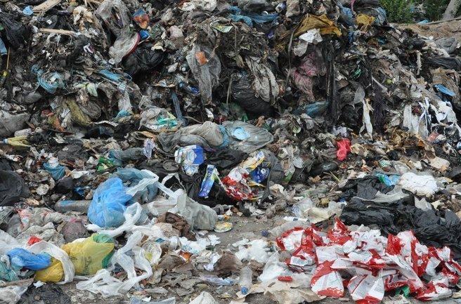 Львовский мусор под Житомиром