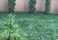 Ужгород засыпало градом. Видео