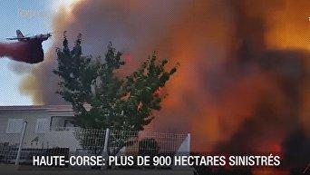 На Корсике и Французской Ривьере бушуют лесные пожары