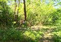 В Житомирской области произошел взрыв