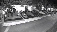 В Виннице с могил бойцов АТО воруют цветы. Видео