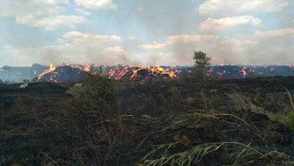 Масштабный лесной пожар под Балаклеей гасят  ссамолетов