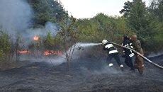 Масштабный лесной пожар в Днепропетровской области