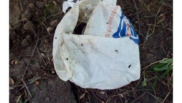 Пакет, в котором были найдены убитые котята