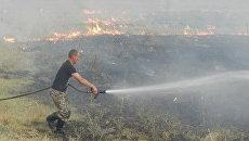 Пожар на территории Днепровского лесничества Цюрупинского лесного хозяйства Херсонской области