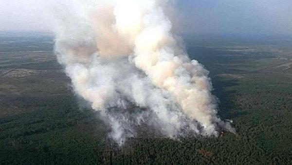 ВГСЧС контролируют ситуацию спожарами вприродных экосистемах