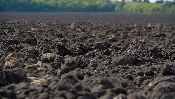 Земельные угодья агрофирмы Нива-2010