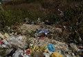 В Тернопольской области на свалке нашли тело новорожденной девочки