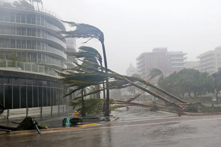 Ураган «Ирма» атаковал Флориду