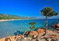 Остров Корсика. Архивное фото