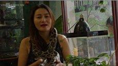 В Хошимине появилось кафе, где можно попить кофе и поиграть с двухметровыми питонами, варанами и прочими рептилиями