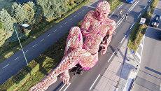 В Голландии представили великанов из цветочных композиций