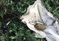 Нападение на дом Юрия Березы в Днепропетровской области