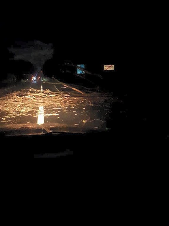 Последствия ночной бури во Львовской области